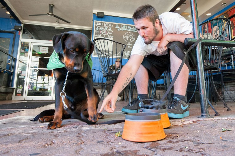 Mason Sexton of Harrisonburg disciplines his 9-month-old rottweiler-lab mix, Rex, while stopping for some food and water at the Artful Dodger downtown Harrisonburg, Va., during a walk Wednesday afternoon, May 13, 2015. (Nikki Fox/Daily News-Record via AP)