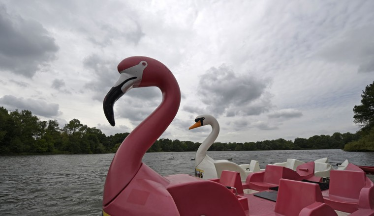 A flamingo-shaped and a swan-shaped pedal boat wait for customers on a lake under a cloudy sky in Gelsenkirchen, Germany, on Monday, May, 18, 2015. (AP Photo/Martin Meissner)