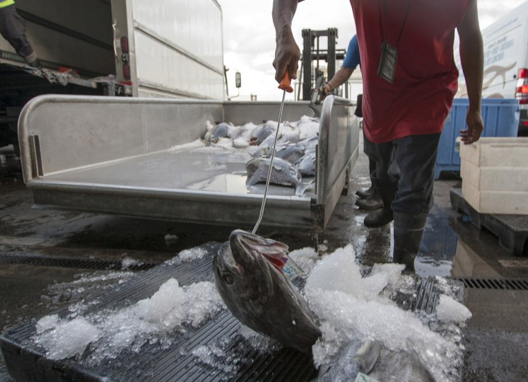 A man laods fresh fish after an auction at United Fishing Agency in Honolulu, Thursday, June 18, 2015. Fresh fish arrive daily and are auctioned off to the highest bidders based on quality and market value. The auction is the biggest in the United States and one of the largest in the world. (AP Photo/Caleb Jones)