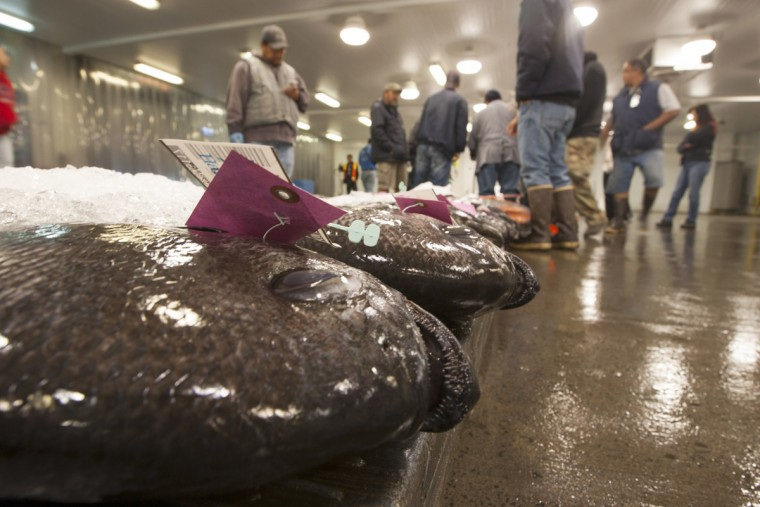Fresh fish wait to be auctioned at United Fishing Agency in Honolulu, Thursday, June 18, 2015. Fresh fish arrive daily and are auctioned off to the highest bidders based on quality and market value. The auction is the biggest in the United States and one of the largest in the world. (AP Photo/Caleb Jones)