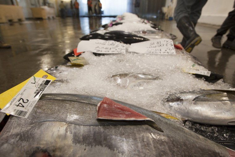 A tail cut of ahi tuna, used to examine quality, sits on the fish before auction at United Fishing Agency in Honolulu, Thursday, June 18, 2015. Fresh fish arrive daily and are auctioned off to the highest bidders based on quality and market value. The auction is the biggest in the United States and one of the largest in the world. (AP Photo/Caleb Jones)