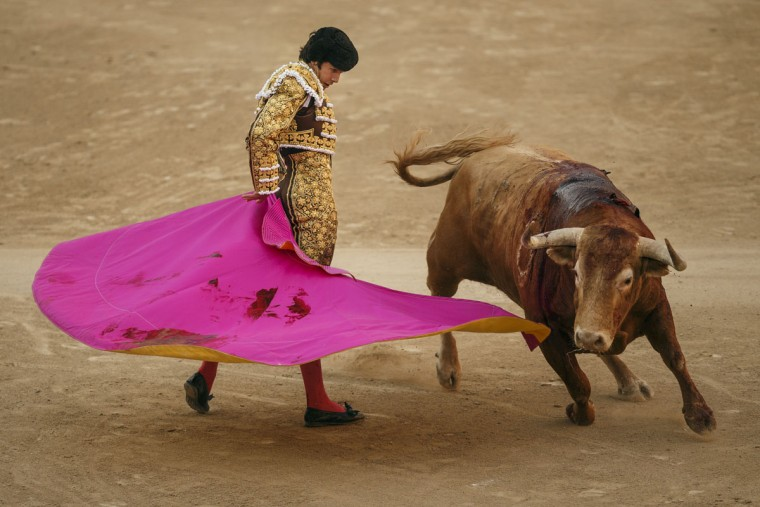 French bullfighter Sebastian Castella performs with an Alcurrucen's ranch fighting bull during a bullfight of the San Isidro fair Madrid, Spain, Wednesday, May 27, 2015. San Isidro's bullfighting fair is one of the most important in the world. Bullfighting is an ancient tradition in Spain. (AP Photo/Daniel Ochoa de Olza)