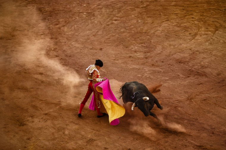 In this photo taken Saturday, May 30, 2015, Spanish bullfighter Alvaro Lorenzo performs with an Alcurrucen ranch fighting bull during a bullfight in Aranjuez, near Madrid, Spain. Bullfighting is an ancient tradition in Spain. (AP Photo/Daniel Ochoa de Olza)