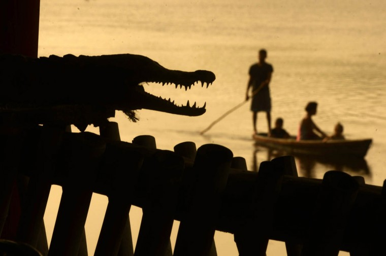 Men fish next to a crocodile (Crocodylus acutus) in Barra de Santiago, El Salvador. (Marvin Recinos/Getty Images)