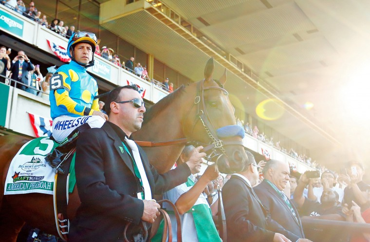 American Pharoah #5, ridden by Victor Espinoza, comes out of the paddock during the 147th running of the Belmont Stakes at Belmont Park in Elmont, New York. (Al Bello/Getty Images)