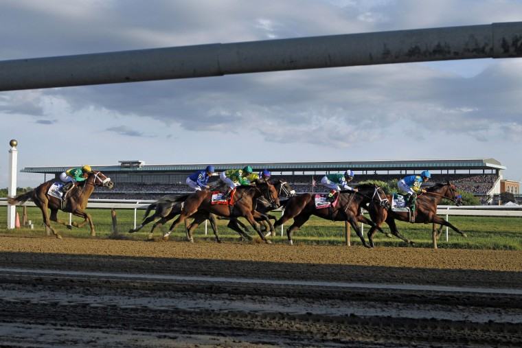 American Pharoah (5), far right, leads the field entering turn three on the way to a Triple Crown victory during the 147th running of the Belmont Stakes horse race at Belmont Park, Saturday, June 6, 2015, in Elmont, N.Y. (Jason DeCrow/Associated Press)