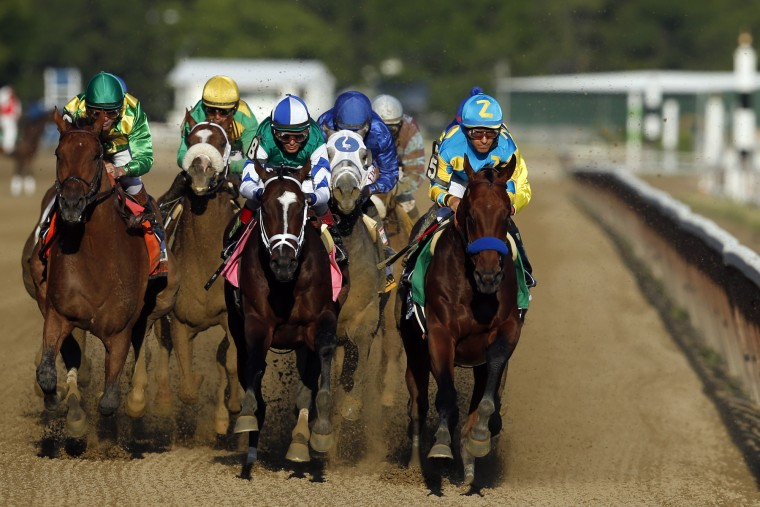American Pharoah (5), far right, leads Materiality (8) and the rest of the field down the back stretch on the way to a Triple Crown victory during the 147th running of the Belmont Stakes horse race at Belmont Park, Saturday, June 6, 2015, in Elmont, N.Y. (Jason DeCrow/Associated Press)