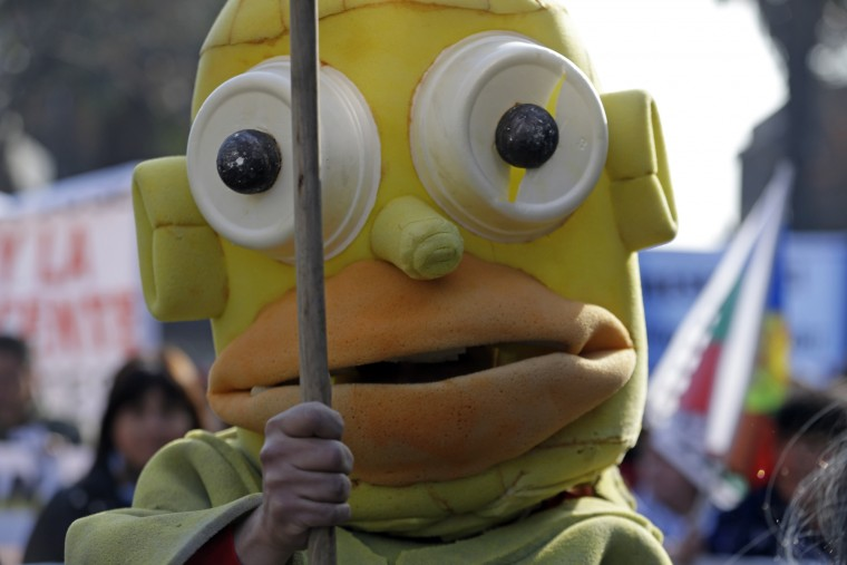 A protester wears a Homer Simpson mask during a march, demanding more participation in the education reform discussions, in Santiago, Chile. Teachers began on June 1 an indefinite strike in protest against the newest education reforms that are being discussed in Congress and promoted by Chile's President Michelle Bachelet's government. (Luis Hidalgo/Associated Press)
