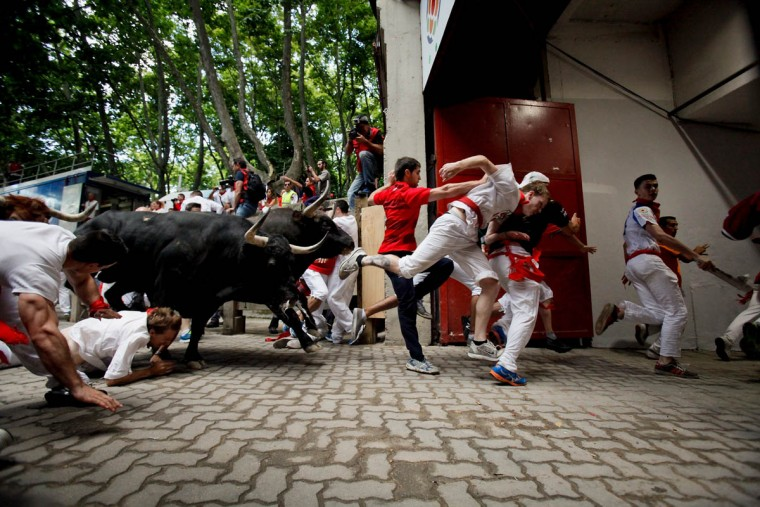 Revelers run with the Tajo and the Reina's fighting bulls entering the bullring during the third day of the San Fermin Running Of The Bulls festival on July 8, 2015 in Pamplona, Spain. The annual Fiesta de San Fermin, made famous by the 1926 novel of US writer Ernest Hemingway entitled 'The Sun Also Rises', involves the daily running of the bulls through the historic heart of Pamplona to the bull ring. (Pablo Blazquez Dominguez/Getty Images)