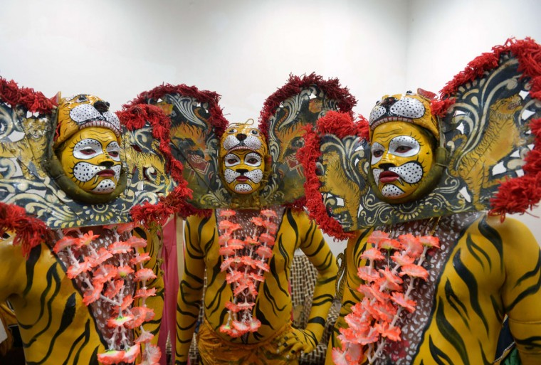 Indian tribal dancers dressed in costume pose as they prepare to perform a traditional 'tiger dance' on the occasion of International Tiger Day in Kolkata on July 29, 2015. (DIBYANGSHU SARKAR/AFP/Getty Images)