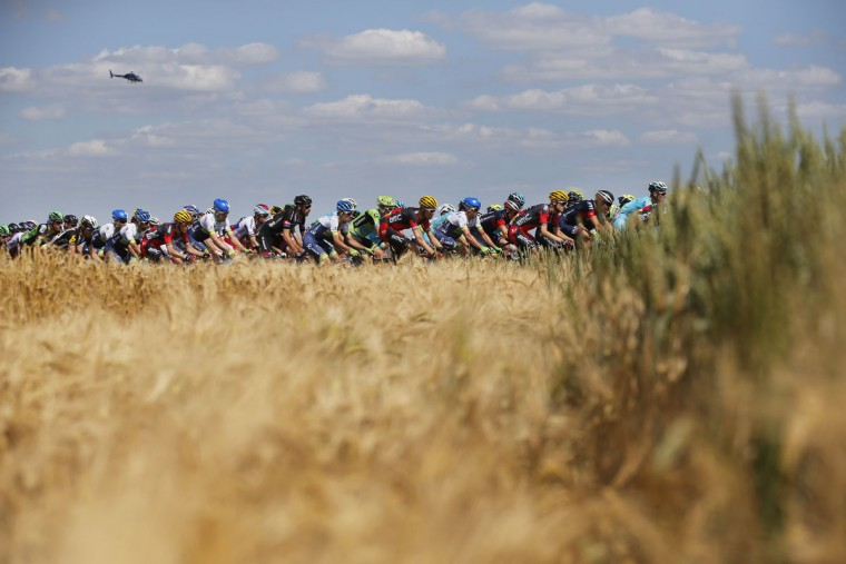 The pack passes wheat fields during the third stage of the Tour de France cycling race over 159.5 kilometers (99.1 miles) with start in Antwerp and finish in Huy, Belgium, Monday, July 6, 2015. (AP Photo/Christophe Ena)