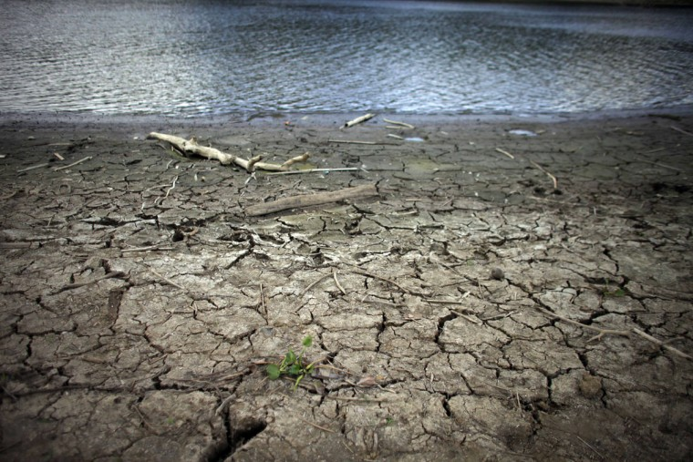 Mud cracks at the drought affected Carraizo reservoir in Trujillo Alto, Puerto Rico. Thanks to El Nino, a warming of the tropical Pacific Ocean that affects global weather, the worst drought in five years is creeping across the Caribbean, prompting officials around the region to brace for a bone dry summer. (AP Photo/Ricardo Arduengo)