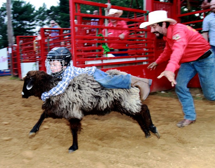Oliver Schmitz, 7, of Spooner, Wis., hangs onto a sheep, during the Muttin Bustin competition, at the Heart Of The North Rodeo, in Spooner Wis., on Saturday July 11, 2015. (Paul M. Walsh /The Eau Claire Leader-Telegram via AP)