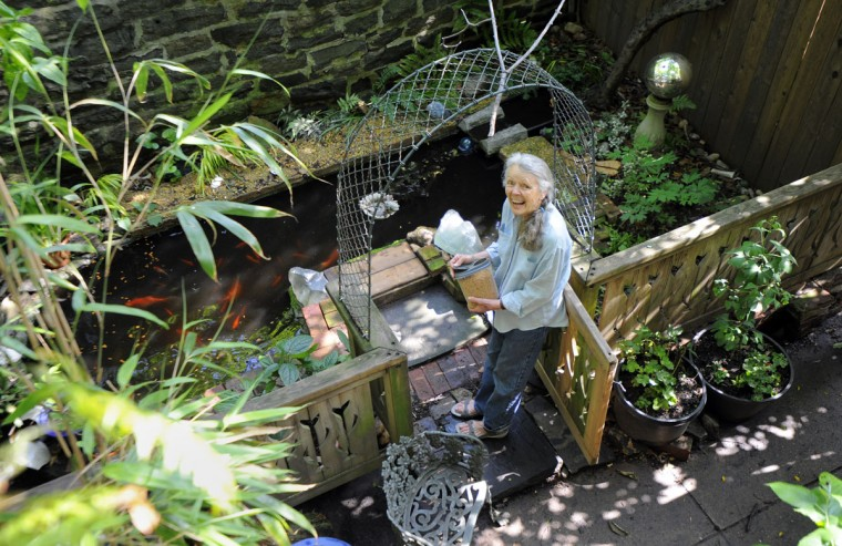 Elizabeth Schaff feeds her goldfish in her pond on June 4, 2014. Her home is involved in the Historic Reservoir Hill Garden & Home Tour 2014. (Lloyd Fox / Baltimore Sun)