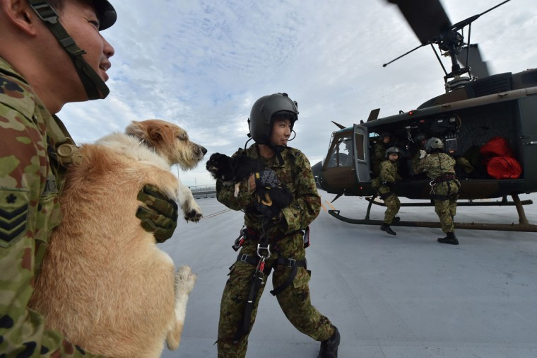 Military servicemen hold dogs during a mission to evacuate people from the roof of a flooded shopping center via helicopter in Joso city, Ibaraki prefecture, on September 11, 2015. A 2,000-strong team joined rescue operations on september 11 as hundreds of people were trapped with 12 missing in Japan after torrential rains triggered massive floods, deluging a city north of Tokyo. (AFP Photo/Kazuhiro Nogi)