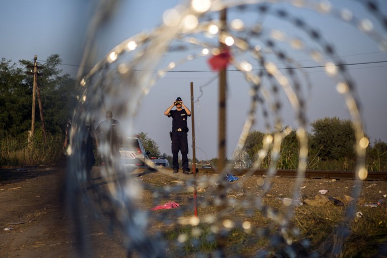 In this Tuesday, Sept. 1, 2015, photo, a Hungarian police officer looks from his binoculars as he checks the border searching for refugees entering the country illegally next to the town of Rˆszke, Hungary. Over 150,000 migrants have reached Hungary this year, most coming through the southern border with Serbia. Many apply for asylum but quickly try to leave for richer EU countries. (AP Photo/Santi Palacios)
