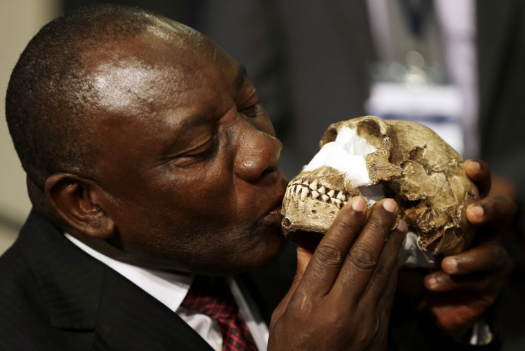 South Africa Deputy President Cyril Ramaphosa, kisses a reconstruction of Homo naledi's face during the announcement made at Maropeng Cradle of Humankind in Magaliesburg, South Africa, Thursday, Sept. 10, 2015. Scientists say they've discovered a new member of the human family tree, revealed by a huge trove of bones in a barely accessible, pitch-dark chamber of a cave in South Africa. (AP Photo/Themba Hadebe)