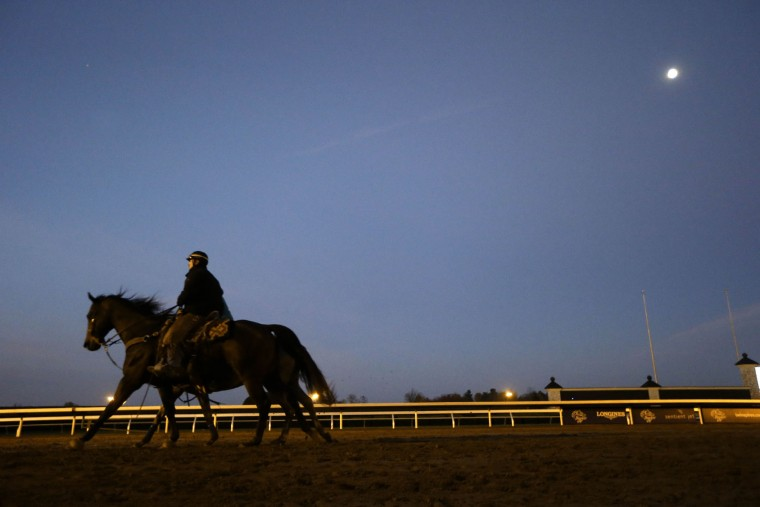 A workout is held in the early morning for the Breeders' Cup horse races at Keeneland race track Thursday, Oct. 29, 2015, in Lexington, Ky. (AP Photo/Mark Humphrey)