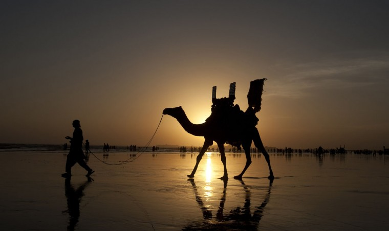 A Pakistani camel owner looks for customers as people visit Karachi beach suffering from warm weather, Friday, Oct. 2, 2015 in Pakistan. (AP Photo/Shakil Adil)