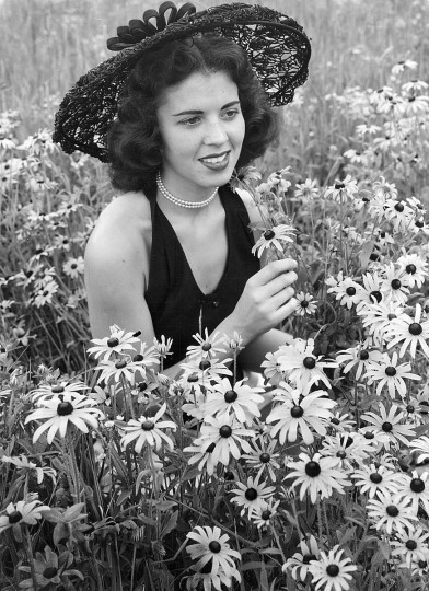1951 - Alice Carter admires Black-Eyed Susans growing in the Green Spring Valley. Although not native, but introduced here from the West, this has since 1918 been the Maryland State flower. (A. Aubrey Bodine/Baltimore Sun)