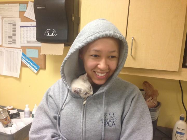Kitten Cuddling 101.