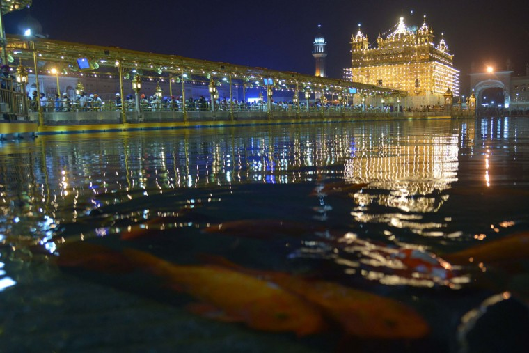 Fish swim in the holy sarover (water tank) at the illuminated Sikh shrine Golden temple in Amritsar on November 11,2015 on the occasion of Bandi Chhor Divas, or Diwali. (NARINDER NANU/AFP/Getty Images)