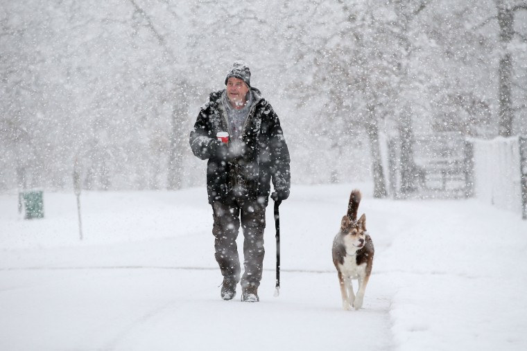 Al Frelk of Elgin, Ill., walks his dog, Shiba, 10, in Lords Park in Elgin on Saturday, Nov. 2015. The first significant snowstorm of the season blanketed some parts of the Midwest with more than a foot of snow and more was on the way Saturday, creating hazardous travel conditions and flight delays. (Stacey Wescott /Chicago Tribune via AP)