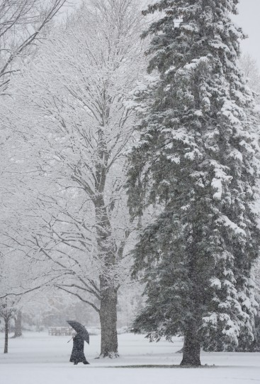 A pedestrian walks through the snow at campus of Andrews University in Berrien Springs, Mich. on Saturday, Nov. 21, 2015. The first significant snowstorm of the season blanketed some parts of the Midwest with more than a foot of snow and more was on the way Saturday, creating hazardous travel conditions and flight delays. (Don Campbell/The Herald-Palladium via AP)