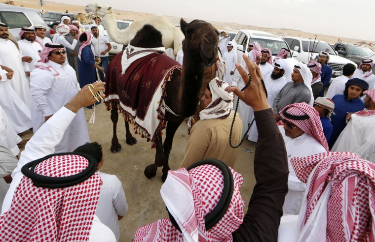 Saudi men celebrate after their camel won a beauty contest during the Mazayin Dhafra Camel Festival in the desert near the city of Madinat Zayed, 150 kms west of Abu Dhabi, on December 25, 2015. (KARIM SAHIB/AFP/Getty Images)