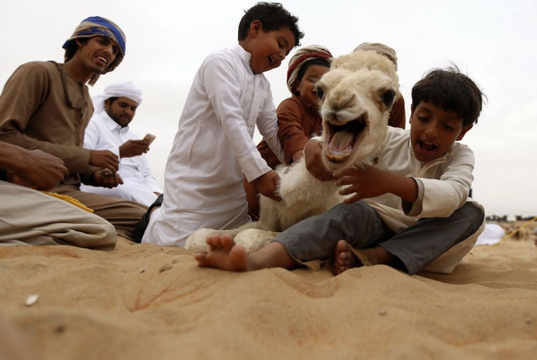 Emirati children play with a baby camel during the Mazayin Dhafra Camel Festival in the desert near the city of Madinat Zayed, 150 kms west of Abu Dhabi, on December 26, 2015. (KARIM SAHIB/AFP/Getty Images)