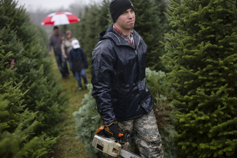 US Army Pfc. Daniel Hurst drags freshly cut Christmas tree to a flatbed for transport as a Taylor family follows behind at the John T Nieman Nursery, Saturday, Nov. 28, 2015, in Hamilton, Ohio. (AP Photo/John Minchillo)