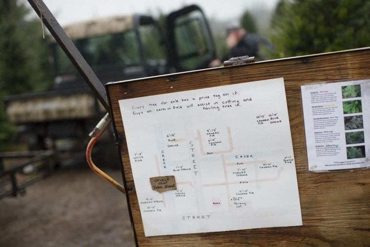 A map of the Christmas tree stocks is displayed on a board at the John T Nieman Nursery, Saturday, Nov. 28, 2015, in Hamilton, Ohio. (AP Photo/John Minchillo)