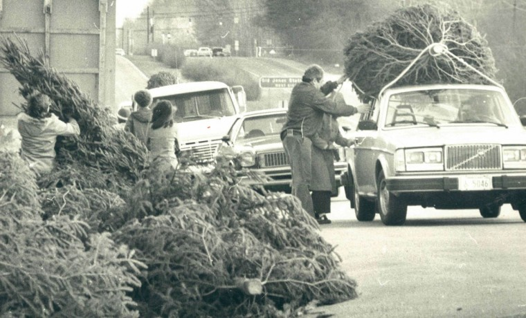 Christmas tree sales are booming these days and the brisk business at this stand, where customers cars were lined up on Ritchie Highway was similar to the turnover experienced by many dealers. Some local merchants say that sales are so good that they will be sold out by the end of this week. People have been buying trees earlier this year than last, possibly motivated by reports of tree shortages. Sellers say this year's supply is down 20 percent from last year. (Lloyd Pearson/Baltimore Sun)
