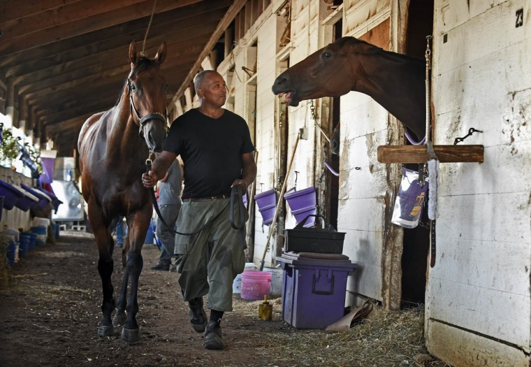 Cornell Madden, 52, of Baltimore, works as a strapper groom for Sola Dei Gloria Stable trainer Hugh McMahon at Laurel Park. Madden keeps his eye on a horse, right, that might try to bite him as he walks to cool off another horse after it's work out. Madden served a jail sentence for attempted murder. He graduated from the Second Chance an innovative program that teaches prison inmates to care for horses. Madden is one of the graduates that is working in thoroughbred racing. (Kenneth K. Lam/Baltimore Sun)