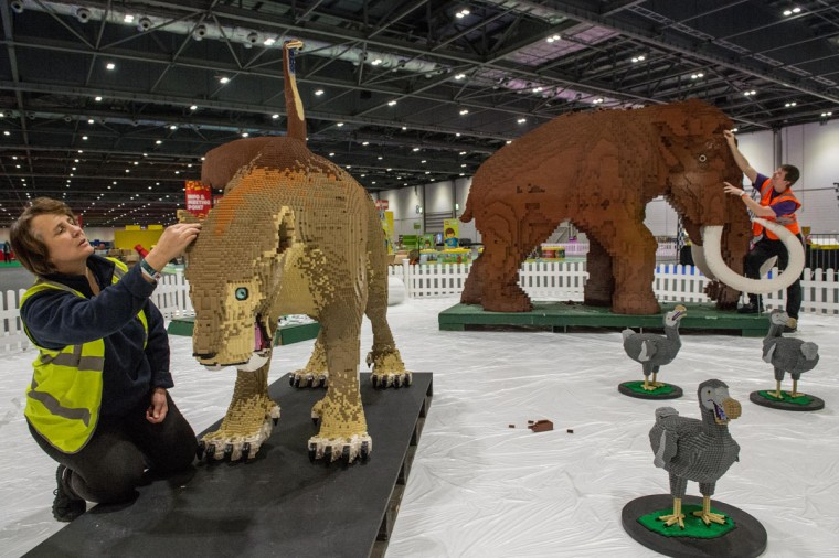 Annie and Ed Diment put the final bricks in place on their Ice Age display, with a Lego woolly mammoth made from 400,000 bricks, which took 9 weeks, and the saber tooth tiger built from 120,000 bricks taking two months to build at ExCel on December 10, 2015 in London, England. (Photo by Chris Ratcliffe/Getty Images)