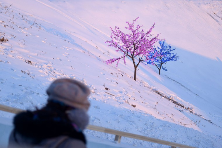 Lights are decorated on trees at the China Ice and Snow World on the eve of the opening ceremony of the Harbin International Ice and Snow Festival in Harbin, northeast China's Heilongjiang province on January 4, 2016. (WANG ZHAO/AFP/Getty Images)