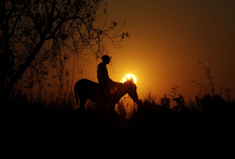 In this Friday, Feb. 5, 2016 picture, the sun sets behind young Egyptian farmer, Ahmed Ayman, 14, and his trained donkey in the Nile Delta village of Al-Arid about 150 kilometers north of Cairo, Egypt. Ayman dreams of one day jumping horses, but he says he would never part with his donkey, even for a huge sum of money, ìbecause she can jump, and I love her.î(AP Photo/Amr Nabil)