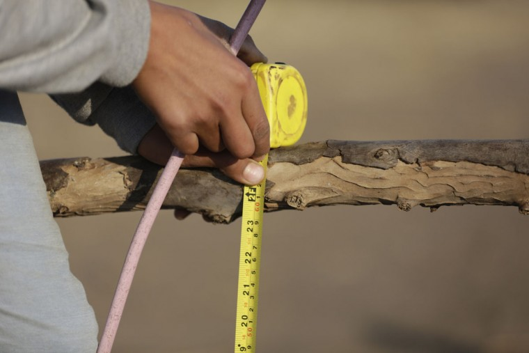 In this Friday, Feb. 5, 2016 picture, Ahmed Ayman measures the height of a barrier before before he starts his daily donkey equestrian-style training in the Nile Delta village of Al-Arid about 150 kilometers north of Cairo, Egypt. (AP Photo/Amr Nabil)