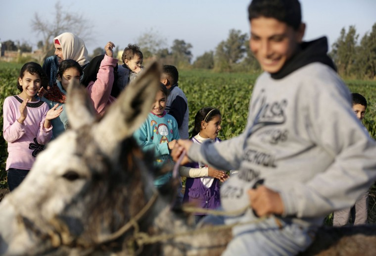 In this Friday, Feb. 5, 2016 picture children applaud Ahmed Ayman and his donkey after they jumped over a barrier in the Nile Delta village of Al-Arid about 150 kilometers north of Cairo, Egypt. (AP Photo/Amr Nabil)