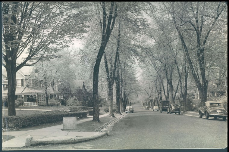 A view of Roland Park at Hawthorne Road at Upland. (1941 Baltimore Sun photo by Aubrey Bodine)