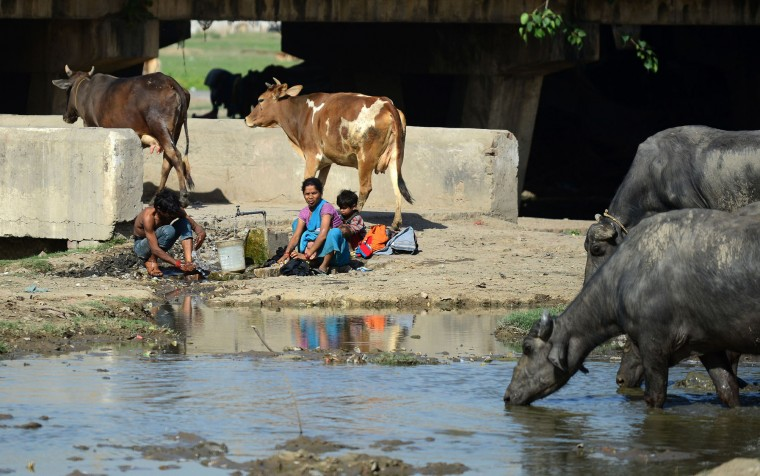 An Indian woman washes clothes by a water tap as animals gather around a polluted pond in Allahabad on March 22, 2016. International World Water Day is held annually on March 22 to focus global attention on the importance of water and advocating for the sustainable management of our water resources. (Sanjay Kanojia/AFP/Getty Images)