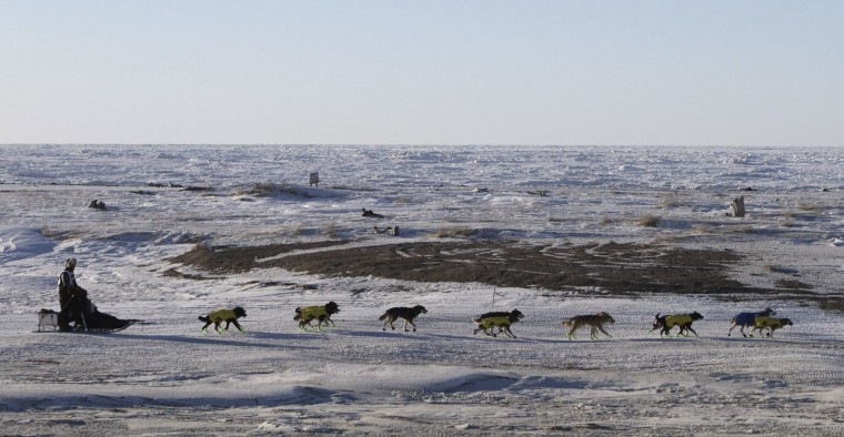 Mats Pettersson, of Sweden, mushes along the frozen Bering Sea coast outside Nome, Alaska, on Wednesday, March 16, 2016. He finished in 27th position in the Iditarod Trail Sled Dog Race. (AP Photo/Mark Thiessen)