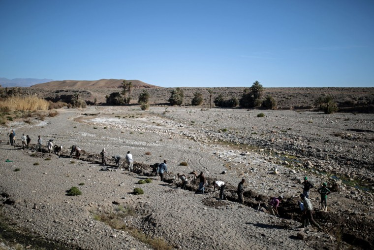 Amazigh villagers dig a canal in search for underground water to irrigate their crops, in the village of Douar Timneit, next to Ouarzazate, central Morocco. The Amazigh dislike the term Berbers, which stems from Latin and which they find insulting. They are among the many peoples the Romans called Barbarians but they became the stuff of legends, giving the world famous names such as the medieval explorer Ibn Battuta, who travelled further in distance than Marco Polo. (AP Photo/Mosa'ab Elshamy)