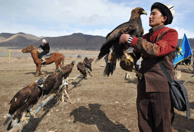 "A Kyrgyz berkutchi (eagle hunter) holds his bird, a golden eagle, during the hunting festival ""Salburun"" in the village of Alysh, near Naryn, 350 km outside Bishkek, on March 13, 2016. (VYACHESLAV OSELEDKO/AFP/Getty Images)"