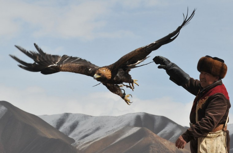 "A Kyrgyz berkutchi (eagle hunter) releases his bird, a golden eagle, during the hunting festival ""Salburun"" in the village of Alysh, near Naryn, 350 km outside Bishkek, on March 13, 2016. (VYACHESLAV OSELEDKO/AFP/Getty Images)"