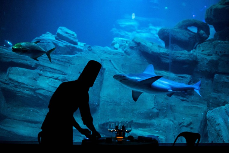 A cook sets up a table for the winners of a competition on the Airbnb accommodation site at the Aquarium de Paris on April 11, 2016 in Paris. (PHILIPPE LOPEZ/AFP/Getty Images)