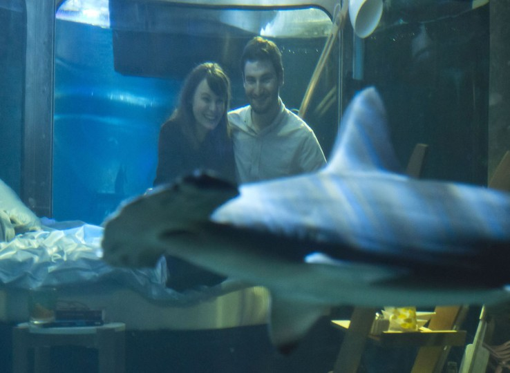 Contest winners Hanah Simpson, left, and Alastair Shipman look at a shark as they sit in a underwater bedroom, housed in a shark tank at the Aquarium de Paris, France, Monday, April 11, 2016. The San Francisco-based house-sharing company Airbnb and the Aquarium de Paris offer to the worldwide contest winners a night in a underwater bedroom with sharks and fish next to the Eiffel tower. (AP Photo/Michel Euler)