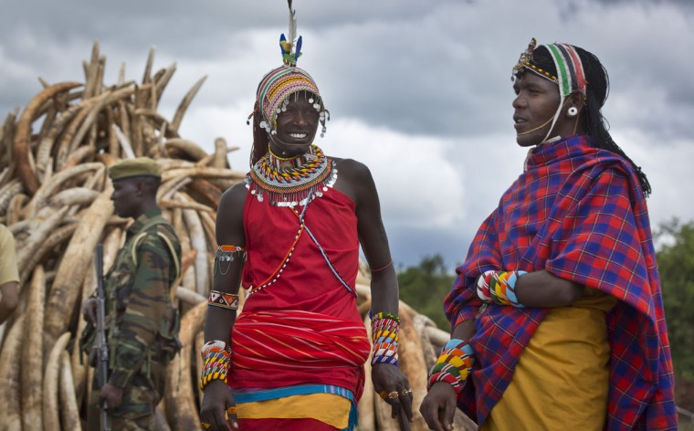 Maasai in ceremonial dress stand around after having their photograph taken with visitors, as a ranger from the Kenya Wildlife Service (KWS) guards one of around a dozen pyres of ivory, in Nairobi National Park, Kenya Thursday, April 28, 2016. The wildlife service has stacked 105 tons of ivory consisting of 16,000 tusks, and 1 ton of rhino horn, from stockpiles around the country, in preparation for it to be torched on Saturday to encourage global efforts to help stop the poaching of elephants and rhinos. (AP Photo/Ben Curtis)
