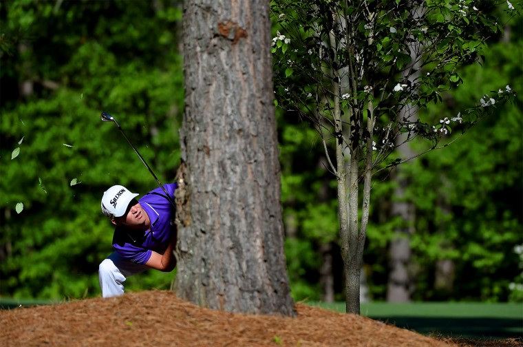 Smylie Kaufman peers around a tree after hitting his ball from the area along the 11th fairway during the final round of the Masters on Sunday, April 10, 2016, at Augusta National Golf Club in Augusta, Ga. (Jeff Siner/Charlotte Observer/TNS)