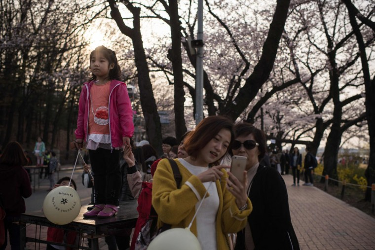 In a photo taken on April 6, 2016 people stand beneath cherry blossoms on Yeouido island in Seoul. The annual cherry blossom festival on Yeouido island in central Seoul runs from April 1-10. (ED JONES/AFP/Getty Images)